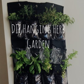 DIY Hanging Garden | twentysomething Indy